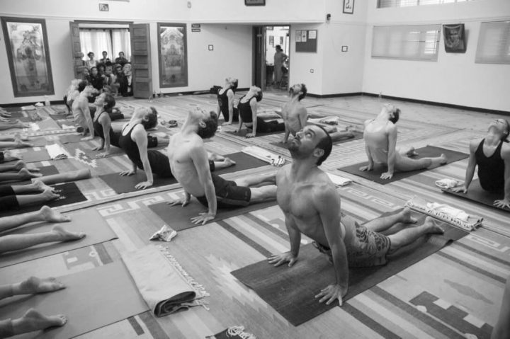 Intensive Ashtanga Yoga course with Mark and Joanne Darby